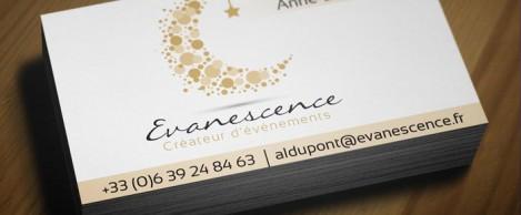 slider-evanescence2